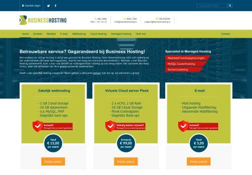 Website screenshot Business Hosting